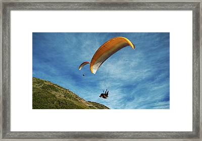 Framed Print featuring the photograph High Flyers by Lorraine Devon Wilke