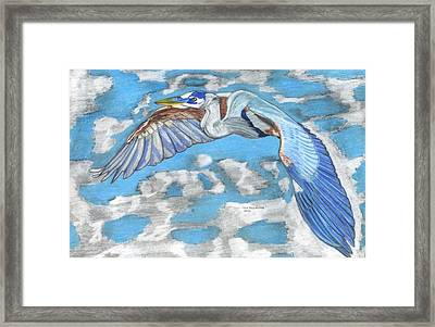 High Flying Framed Print by Don  Gallacher