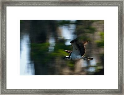 High Speed Pass Framed Print by Frank Feliciano