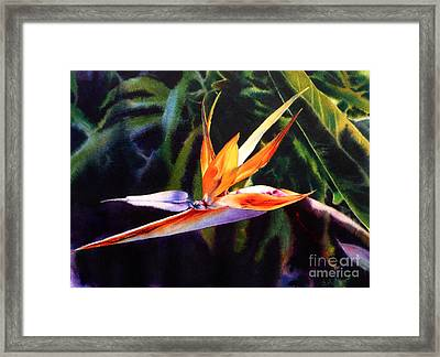 High Summer Dreams Framed Print by Arena Shawn