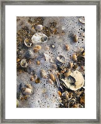 High Tide Line Framed Print by Adrian Bicker