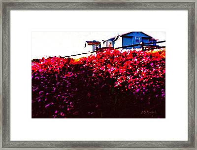 Higher Ground Framed Print by Brian D Meredith