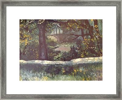 Highland Park 1 Framed Print by Victor SOTO