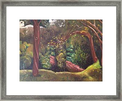 Highland Park 2 Framed Print by Victor SOTO