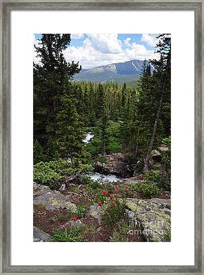 Hiking In Colorado Framed Print