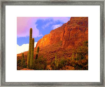 Hiking The Canyon Framed Print