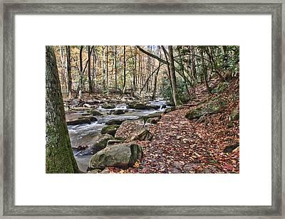 Hiking Trail To Cascade Falls Framed Print