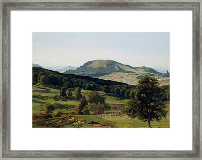 Hill And Dale Framed Print by Albert Bierstadt