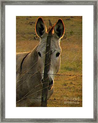 Hill Country Camouflage Framed Print