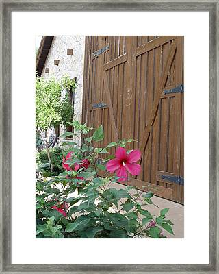 Hill Country Hibiscus Framed Print by Elizabeth Sullivan