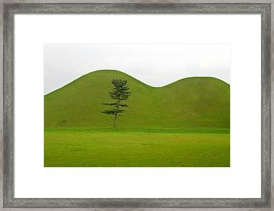 Hill Tombs And Tree Korea Framed Print by Gabor Pozsgai