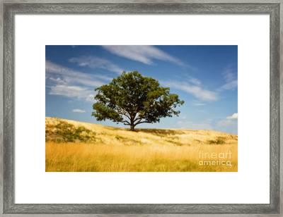 Hill Top Beauty Framed Print