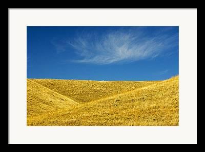 Cypress Hills Pp Framed Prints