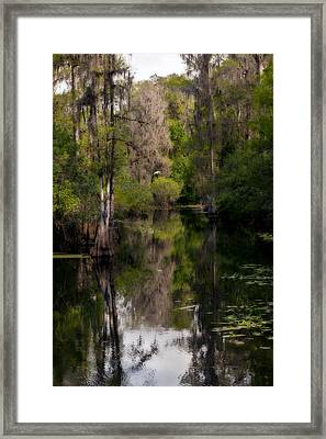 Framed Print featuring the photograph Hillsborough River In March by Steven Sparks