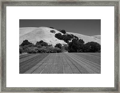 Framed Print featuring the photograph Hillside Farmland by Kathleen Grace