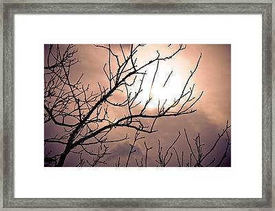 Hindered Sunset Framed Print by Victoria Lawrence