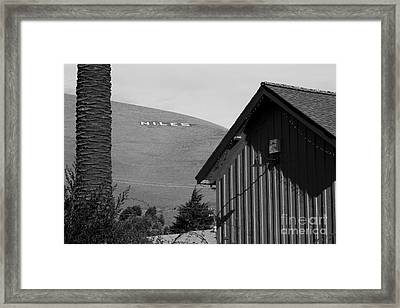 Historic Niles District In California Near Fremont . Niles Letters On Hill From Niles Town Plaza.bw Framed Print by Wingsdomain Art and Photography