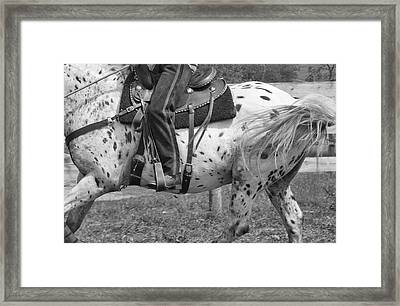 Hittin The Trail Framed Print