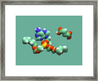 Hiv Drug Molecule Framed Print by Dr Tim Evans