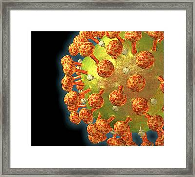 Hiv Particle Framed Print by Roger Harris