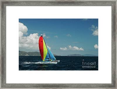 Hobiecat 1 Framed Print by Tim Mulina