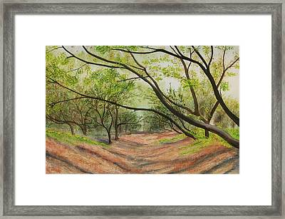 Framed Print featuring the painting Hobo Jungle by Teresa Beyer