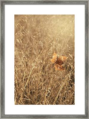 Hold Me Tenderly Framed Print by Laurie Search