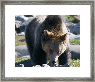 Hold On I Am Coming Framed Print