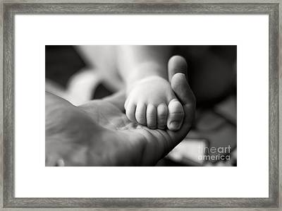 Holding Life Framed Print by Bogdan Ivan