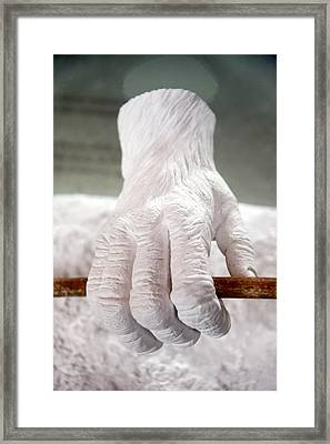 Holding On For As Long As I Can Framed Print