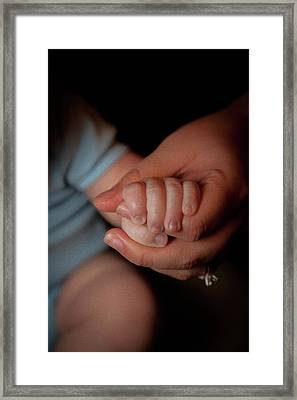 Holding On Framed Print by Sara Hudock