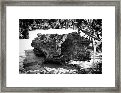 Framed Print featuring the photograph Hollow Log by Thanh Tran