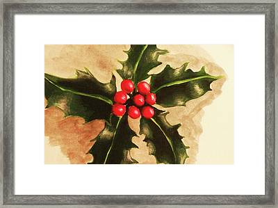 Holly And Ivy Framed Print