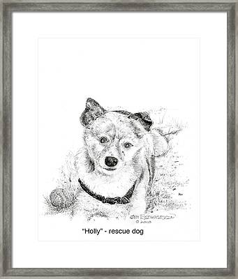 Framed Print featuring the drawing Holly Rescue Dog by Jim Hubbard