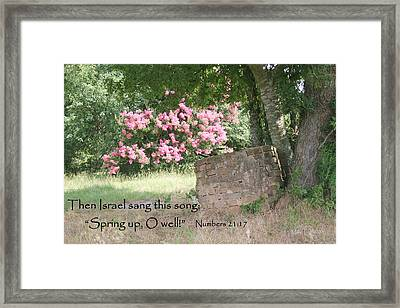 Holmes Family Well Framed Print by Mike Lytle