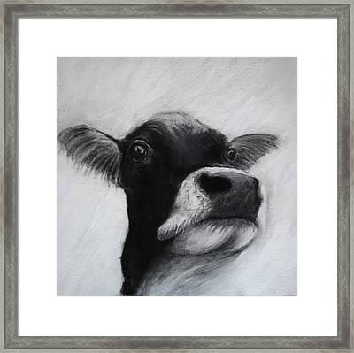 Holy Cow Framed Print by Lynn Hughes