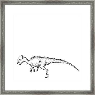 Homalocephale - Dinosaur Framed Print by Karl Addison