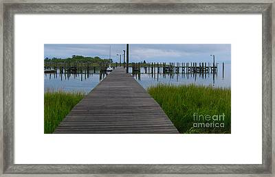 Framed Print featuring the photograph Home Alone by Linda Mesibov