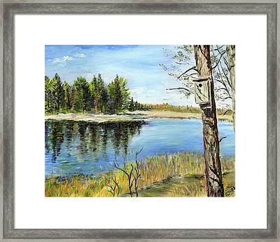 Home At Dragonfly Pond Framed Print