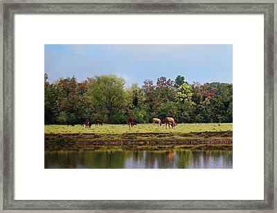 Home On The Range Framed Print by Susan Bordelon