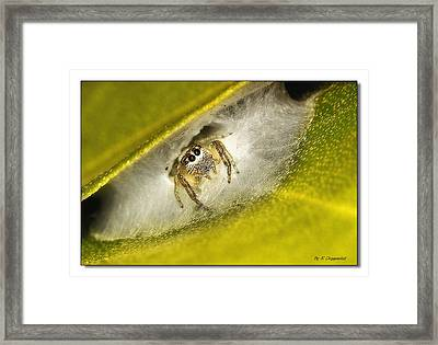 Framed Print featuring the digital art Home Sweat Home 0001 by Kevin Chippindall