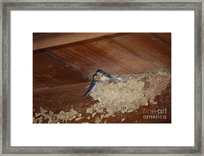 Home Sweet Home Framed Print by Nick