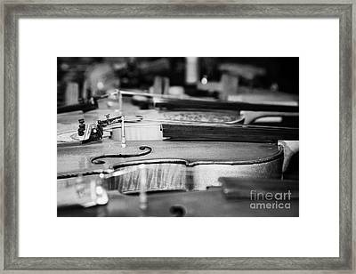 Homemade Handmade Violins Made Of Different Materials And Shape Framed Print by Joe Fox