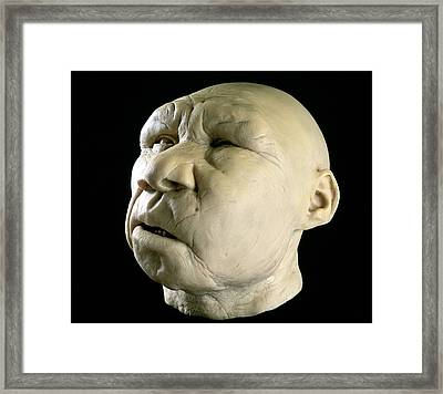 Homo Heidelbergensis Reconstruction Framed Print by Javier Truebamsf