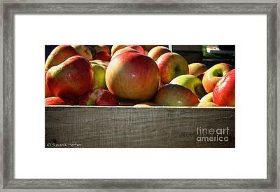 Honey Crisp Framed Print