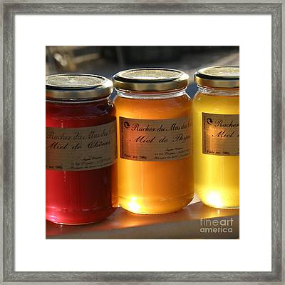 Framed Print featuring the photograph Honey by Lainie Wrightson