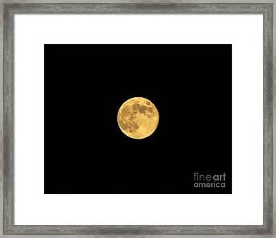 Honey Moon Framed Print by Al Powell Photography USA