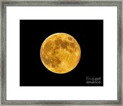 Honey Moon Close Up Framed Print by Al Powell Photography USA