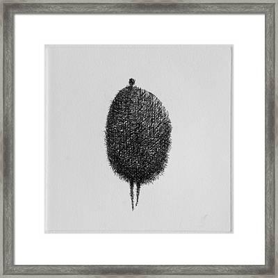 Honey Framed Print by Valdas Misevicius