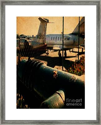 Honeybee And The Jets Framed Print by J Burns